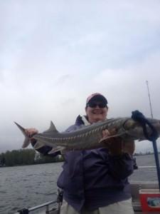 April fishing report columbia willamette river 2013 or for Willamette river fishing report